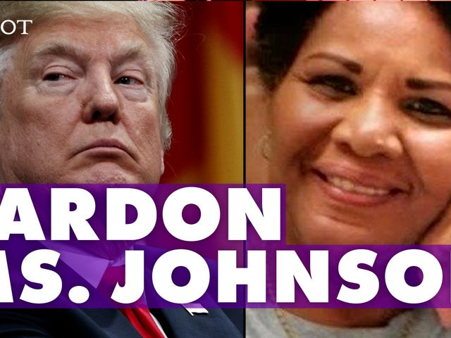 Why Everyone Needs to Know About Alice Marie Johnson, the Great-Grandmother Who Is Serving a Life Sentence [Update: Johnson's…