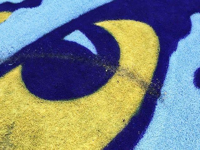Des étudiants de l'Alabama accusés d'avoir pénétré dans le stade de LSU, essayant de détruire le logo du milieu de terrain, échouant