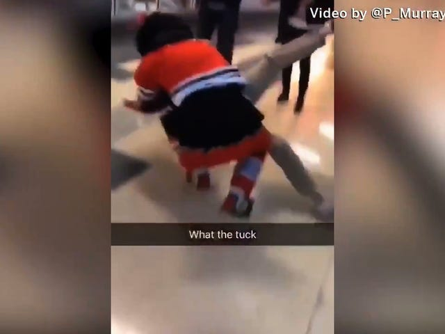 Blackhawks Mascot Gets Into A Wrestling Match With A Fan