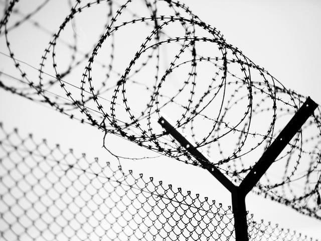 After Shutdown Causes Family Visits to Be Canceled, Inmates at New York City Jail Go on Hunger Strike