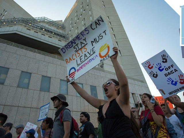 Trên một luật sư Đỗ-na-đa Tướng đã buộc phải Ngưng Quản trị Trump Từ Kết thúc DACA