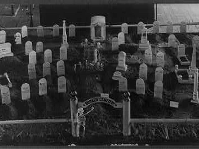 Buhach Bug Cemetery