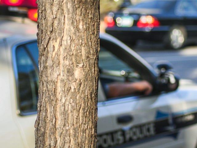 Ο αστυνομικός της Μινεάπολις απονέμεται $ 585.000 σε βάσεις δεδομένων για την κατάχρηση της κατάστασης άδειας οδήγησης κράτους