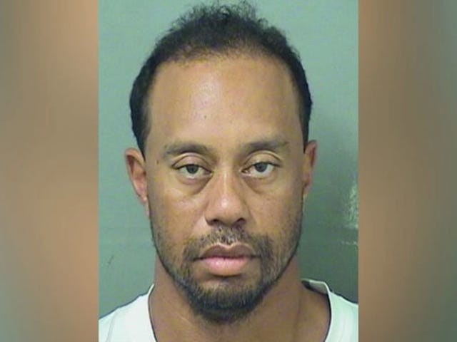 Tiger Woods Had Vicodin, Dilaudid, Ambien And More In System During DUI Arrest