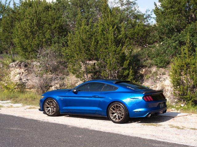 Часовое правило - Blue Mustang часть 2