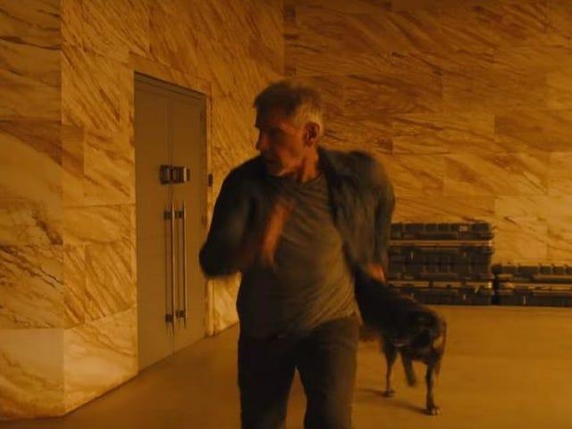 È ufficiale: Deckard's Dog in <i>Blade Runner 2049</i> è il miglior cane