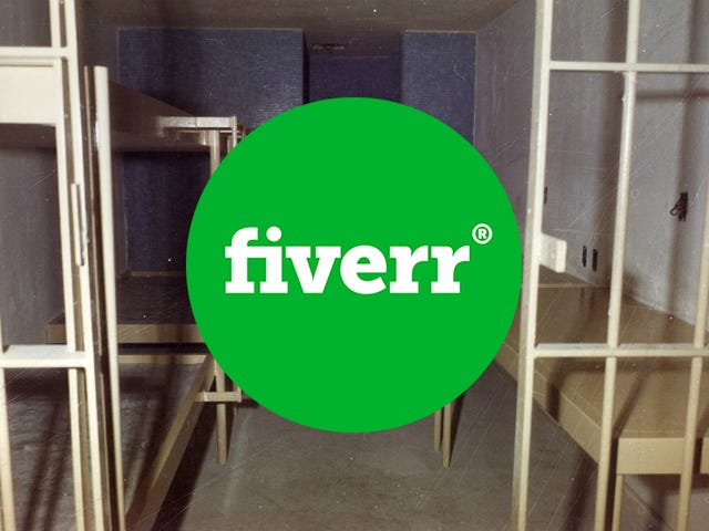 Woman Makes Video for Fiverr, Gets Framed for Fake Anthrax Packages