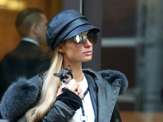 Cảm giác ấm lòng: Paris Hilton bình chọn cho bạn bè gia đình người cao tuổi đã xem băng sex của cô ấy