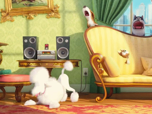 Oooh, An Animated Film About Pets!