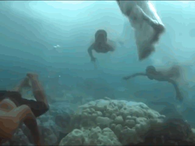 La extraordinaria historia de los mocos, la que puede ver bajo el agua como los delfines