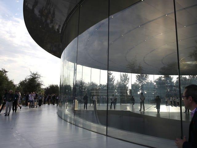 A excelência da Apple no design leva a funcionários a entrar em paredes de vidro