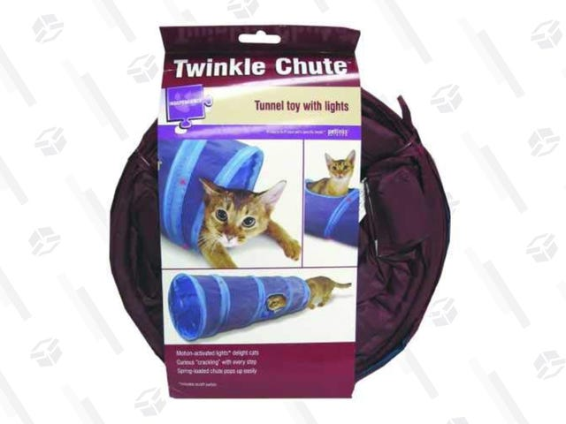You Cat Will Happily Ignore You When Buy Them This $6 Tunnel