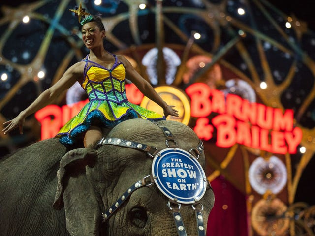 Ringling Bros. Circus Is Shutting Down, Oh Well