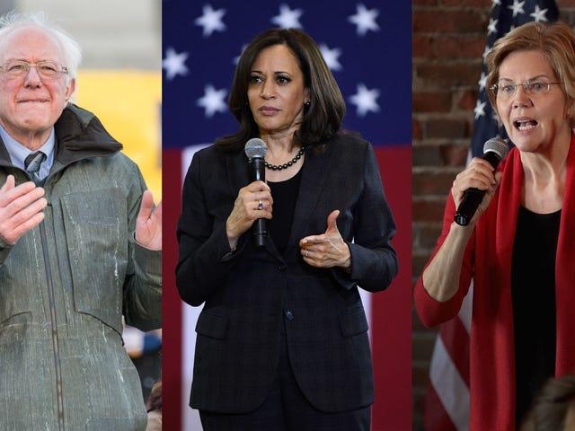 Bernie Sanders, Kamala Harris, and Elizabeth Warren Finally Defend Ilhan Omar Against Racist Smear
