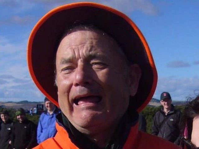 Is This a Picture of Tom Hanks or Bill Murray?