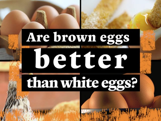 Are brown eggs better than white eggs?