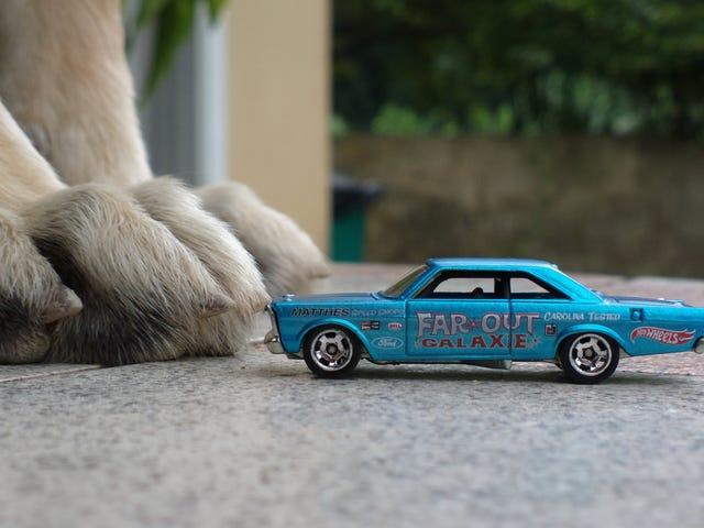 LaLD car week - Paws
