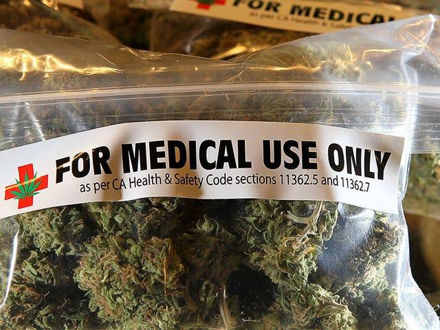 Hospitals Deny Patients Organ Transplants for Smoking Weed