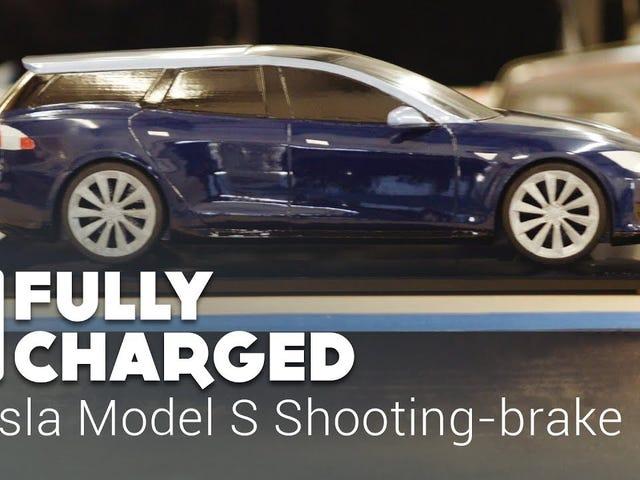 Tesla Model Swag-On
