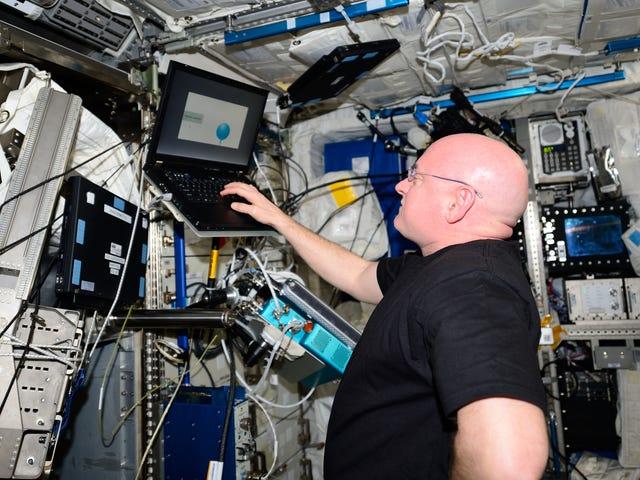 Resultados finais do estudo de gêmeos da NASA mostram como Scott Kelly mudou depois de um ano no espaço