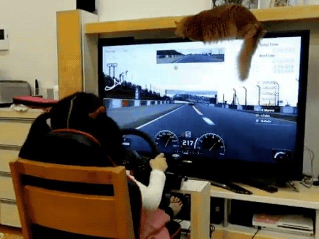 Voor een 5-jarige is deze jongen behoorlijk goed in <i>Gran Turismo</i>
