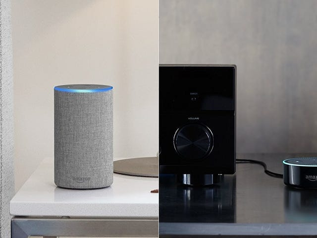 Amazon's Discounting Both the Echo and Echo Dot
