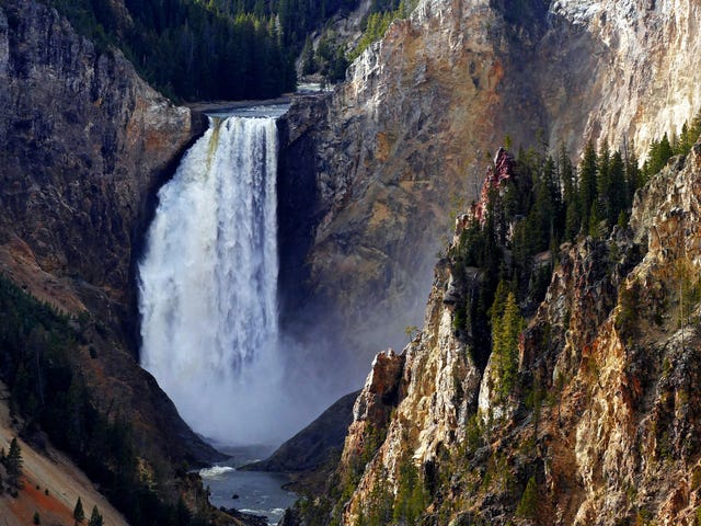 The Best Yellowstone Travel Tips From Our Readers