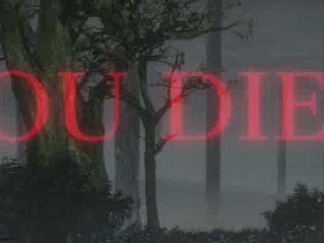 Bloodborne игроки убивают себя в самом неожиданном месте