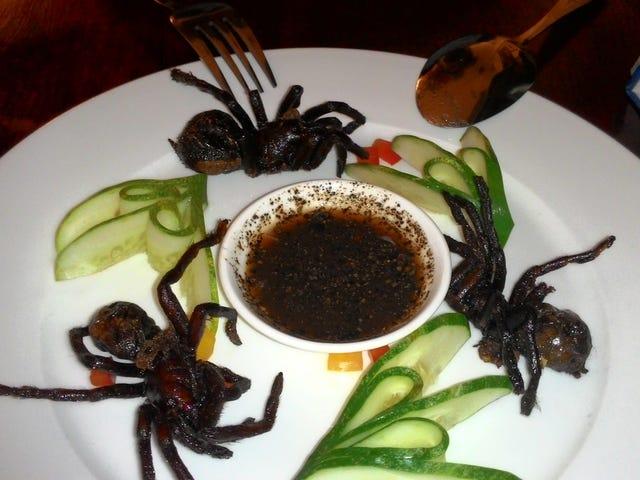 Sesetengah Serangga yang Edible dapat mengalahkan Jus Orange dan Minyak Zaitun dalam Ujian Antioksidan
