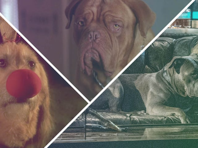 Simply the beast: 18 of the greatest dog sidekicks in pop culture