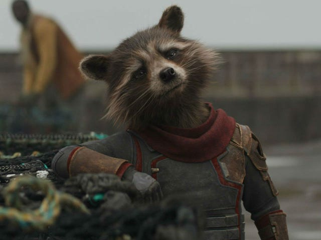 It Sure Sounds Like Guardians of the Galaxy Vol. 3 Will Be Digging Into Rocket Raccoon's Backstory