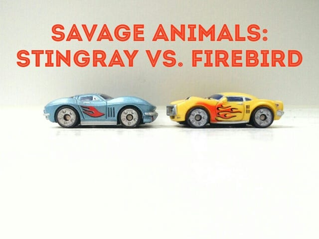Sting Ray vs. Firebird