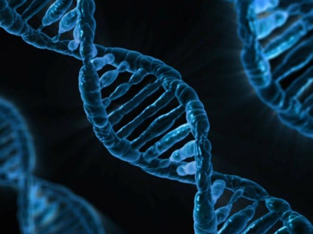 Почему Патентная битва за вопросы CRISPR (и почему это не так)