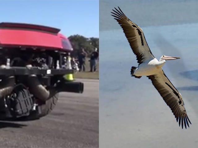 비디오는 호수에 부서지는 2,000 hp의 램 보르 기니 갈라 르도를 보여준다