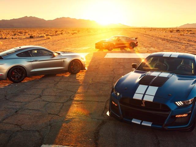 Shelby GT500 er hurtigere end McLaren F1 i en underlig metrisk