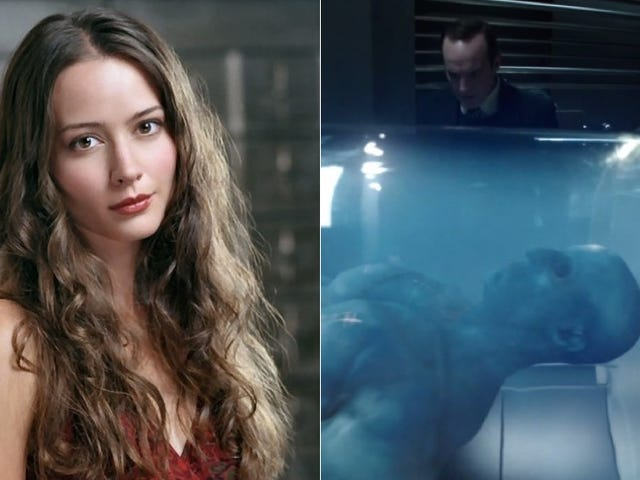 Amy Acker Joins Agents Of SHIELD And The Blue Thing's Been Identified