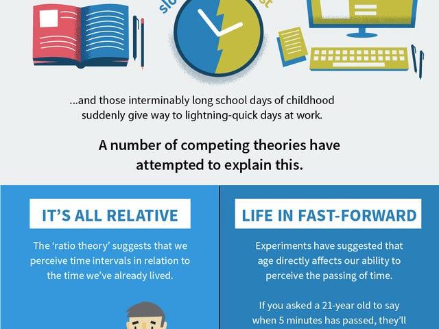 Una guía visual para reducir la velocidad y disfrutar cada momento