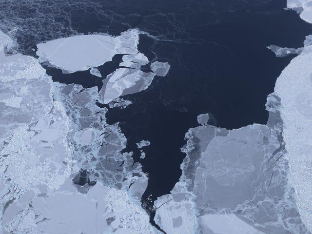 Ο πάγος της Αρκτικής Θάλασσας χτυπά το δεύτερο χαμηλότερο μέγεθος στον δορυφορικό δίσκο
