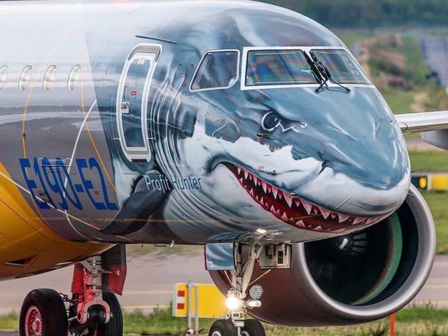 Shark plane. I repeat, shark plane.