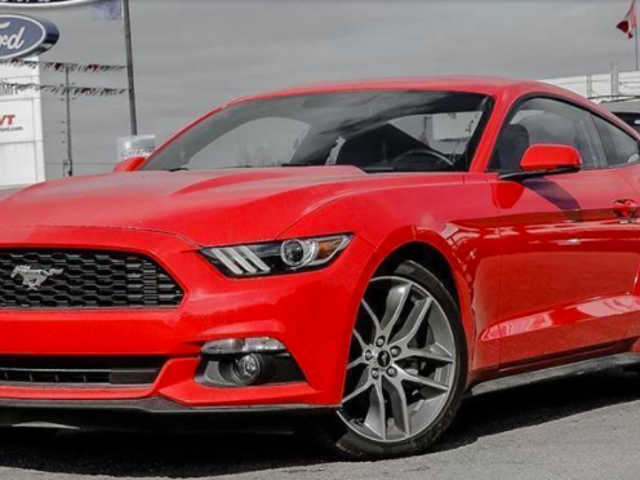 New 2015 Mustang i4T + Premium? Name the price!