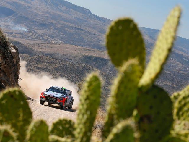 24 Ώρες του WRC Τετάρτη Wallpaper: 9 μ.μ.