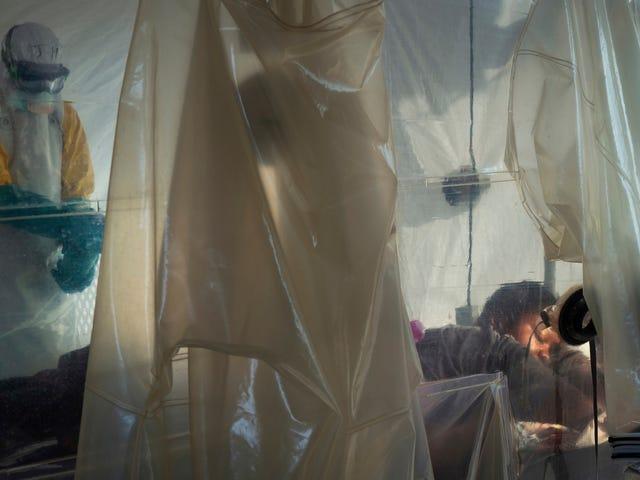 Verdens helseorganisasjon sier at Tanzania holder tilbake informasjon om mistenkte ebolasaker