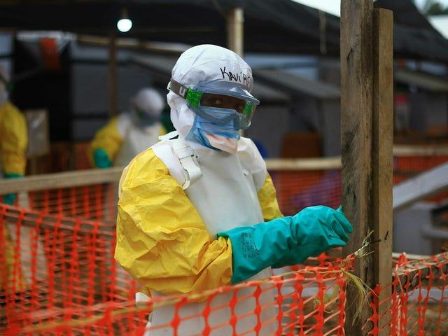 Wabak Ebola Terburuk Kedua dalam Sejarah Kini Membunuh 66 Peratus Orang yang Menjadi Terjejas
