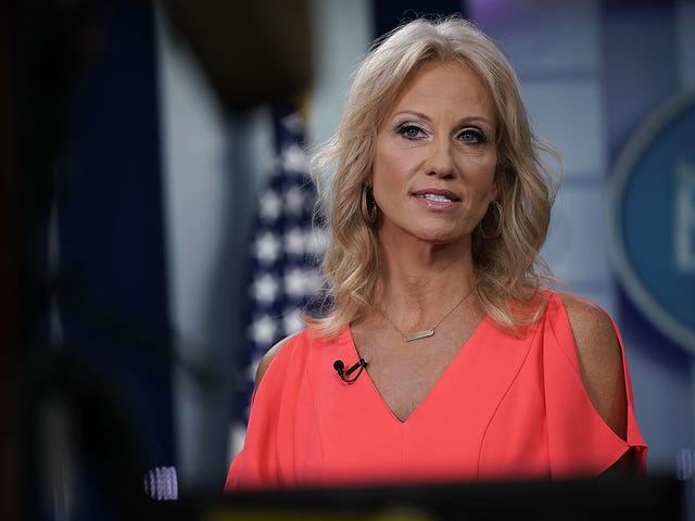 Kellyanne Conway Tells CNN She Is a Victim of Sexual Assault