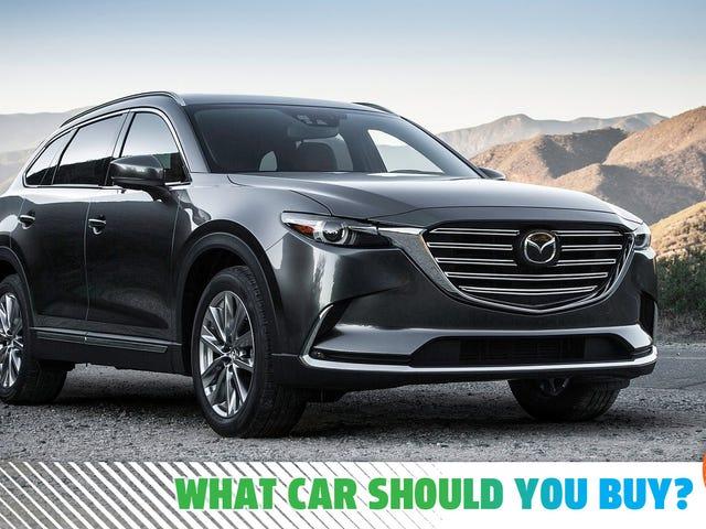 J'ai besoin d'un grand véhicule qui a l'air professionnel mais qui ne soit pas trop luxueux!  Quelle voiture devrais-je acheter?