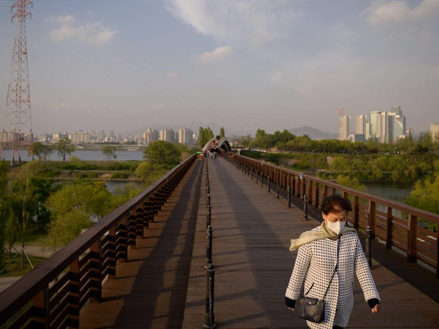 Intet bevis for koronavirusrefektion, siger sydkoreanske embedsmænd