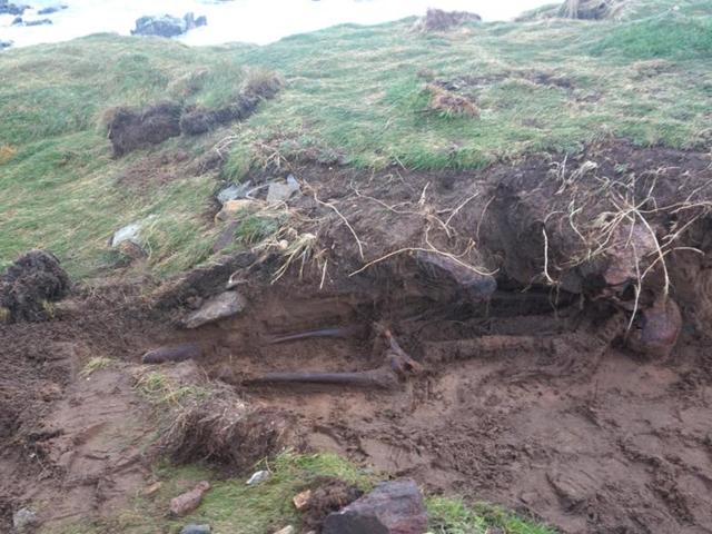 O hurhéli Ophelia desenterra uma tumba celta com um extra-esqueleto de hace 1.500 años que aún conserva la piel