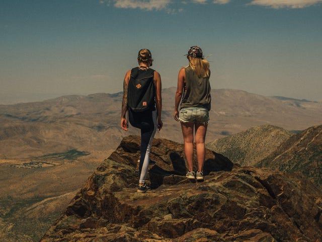 Viaja por el mundo con un extraño total gratis