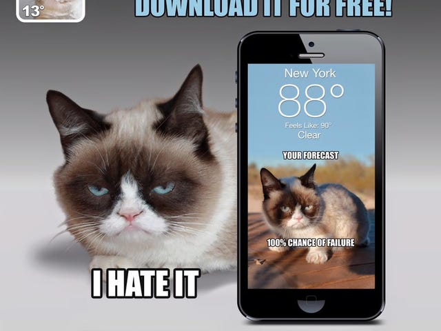 The Grumpy Cat Weather App Won't Sugar Coat Things For You