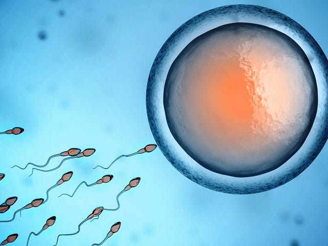 This On-Off Switch for Sperm Could Lead to Better Male Birth Control